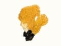 Ramaria aurea (Schaeff.:Fr.) Quél. , Goldgelbe Koralle