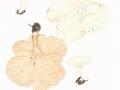 Clitocybe phyllophila (Pers.) Kumm. , Laubfreund-Trichterling , Streuliebender Trichterling