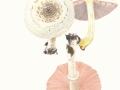 Agaricus xanthodermus Genev. var. xanthodermus, Karbol-Egerling , Veränderlicher Karbol-Egerling