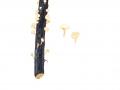 Cudoniella clavus (Alb. & Schwein.: Fr.) Dennis , Wasser-Kreisling