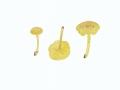 Chrysomphalina grossula (Pers.) Norvell , Redhead & Ammirati , Gelboliver Goldnabeling, Gelbgrüner Holznabeling , Olivgelber Holznabeling