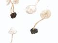 Cystolepiota seminuda (Lasch) Bon , Behangener Mehlschirmling  , NPH