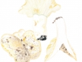 Russula chloroides
