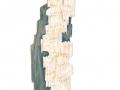 Antrodia heteromorpha (Fr.: Fr.) Donk , Vielgestaltige Tramete , Vielgestaltige Nadelholz-Tramete