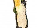 Cylindrobasidium laeve  (Pers.: Fr.) Chamuris , Ablösender Rindenpilz