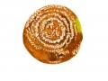 Monilinia fructigena (Pers.) Honey , Apfelfruchtfäule , Fruchtfäule