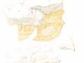 Pappia fissilis  (Berk. & M.A.Curtis) Zmitr. , Fettiger Saftporling, Apfelbaum-Weichporling, Apfelbaum-Weißporling